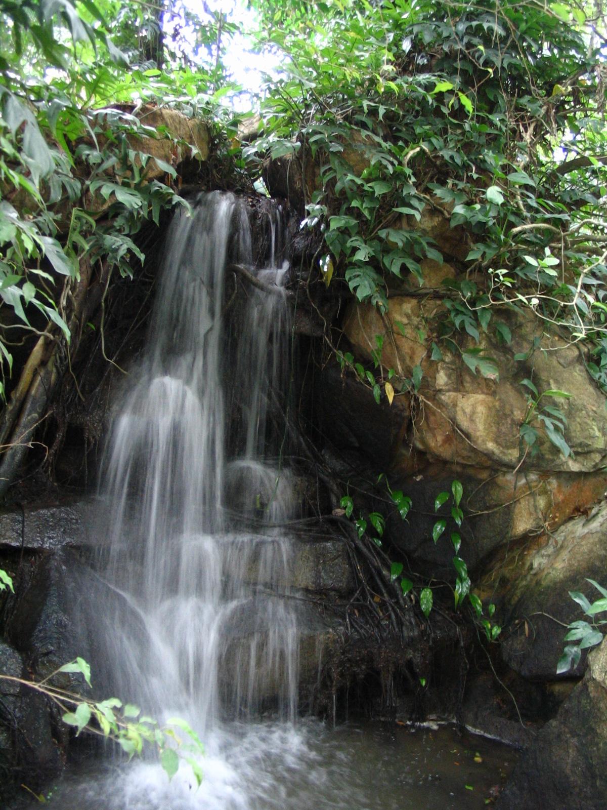 http://www.moisseenko.su/photo/Cambodia-Thai/Nooch/IMG_4879.JPG